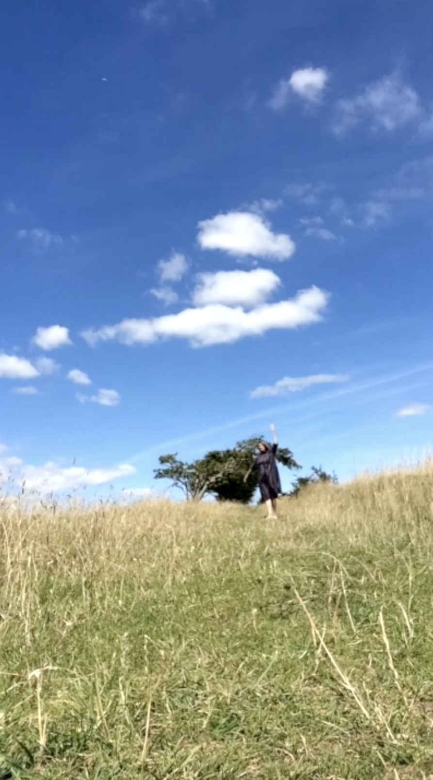 Dancer outside with sky, field, tree